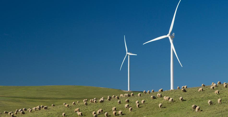 Hornsdale Wind Farm