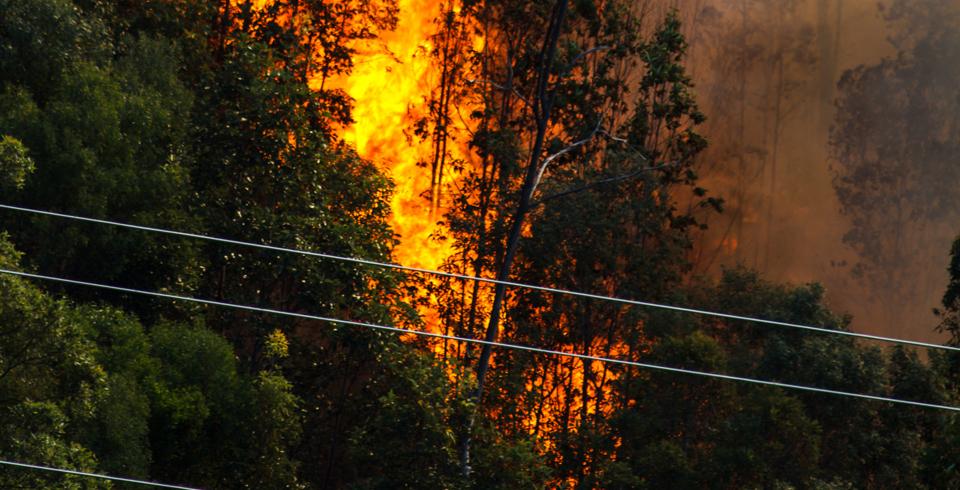 fire, bushfire, port lincoln