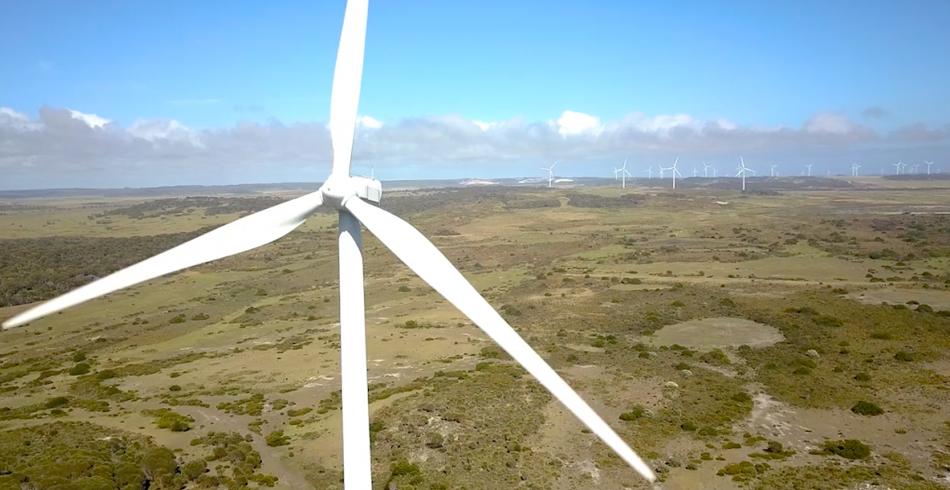 alinta energy, wind turbines market, investment