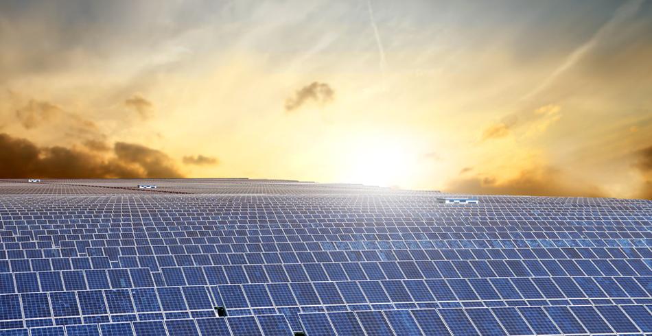 canadian solar, solar, NSW energy, energy NSW
